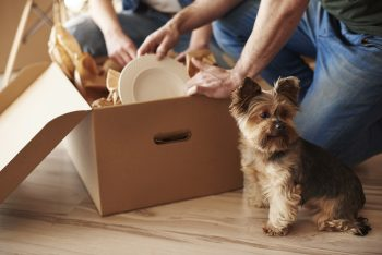 Family Moving Into Home with Dog