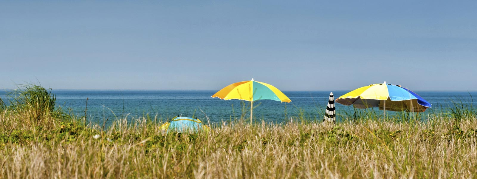 Beach umbrellas and beach grass
