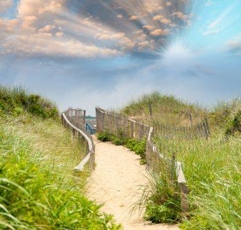 Path to beach Nantucket